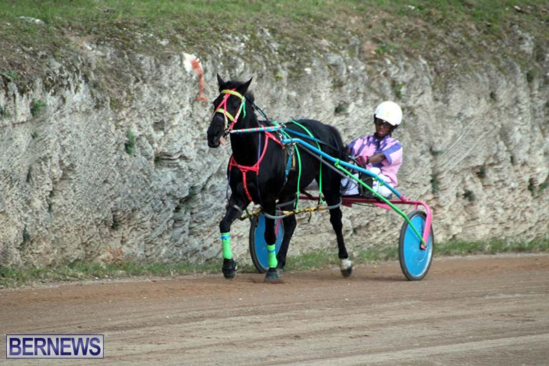 Bermuda-Harness-Pony-Racing-Season-Oct-24-2020-13
