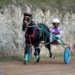 Bermuda Harness Pony Racing Season Oct 24 2020 14