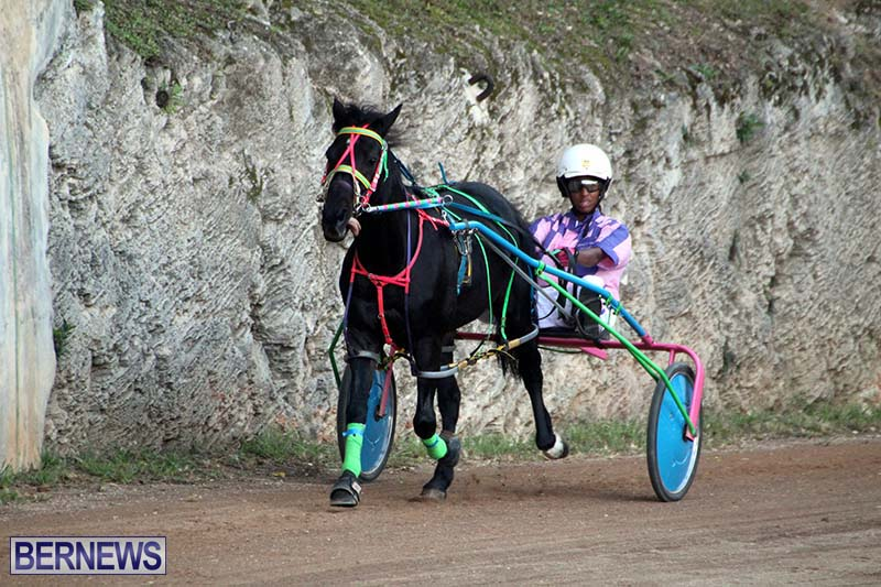Bermuda-Harness-Pony-Racing-Season-Oct-24-2020-14