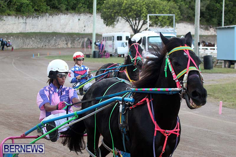 Bermuda-Harness-Pony-Racing-Season-Oct-24-2020-15