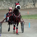 Bermuda Harness Pony Racing Season Oct 24 2020 17