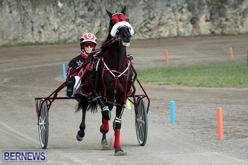 Bermuda-Harness-Pony-Racing-Season-Oct-24-2020-17
