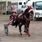 Bermuda Harness Pony Racing Season Oct 24 2020 18