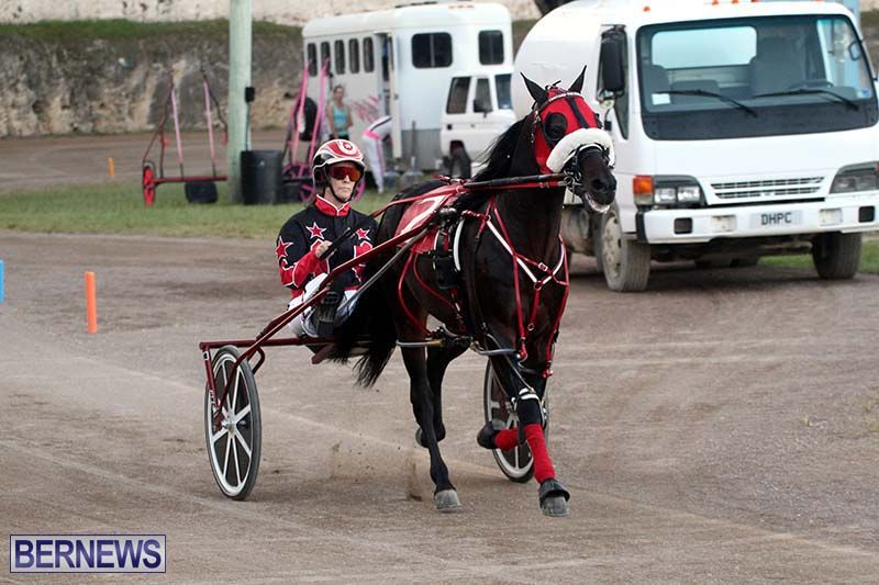 Bermuda-Harness-Pony-Racing-Season-Oct-24-2020-18