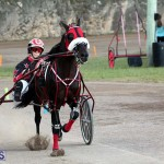 Bermuda Harness Pony Racing Season Oct 24 2020 19