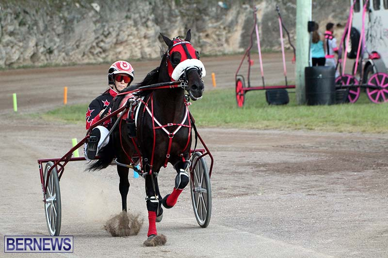 Bermuda-Harness-Pony-Racing-Season-Oct-24-2020-19