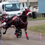 Bermuda Harness Pony Racing Season Oct 24 2020 20