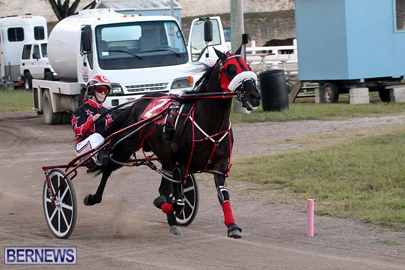 Bermuda-Harness-Pony-Racing-Season-Oct-24-2020-20