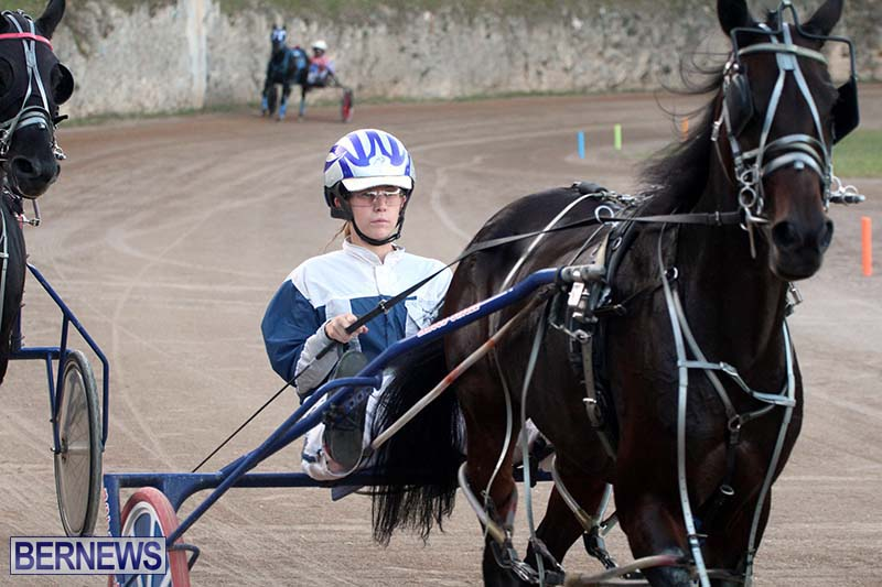 Bermuda-Harness-Pony-Racing-Season-Oct-24-2020-3