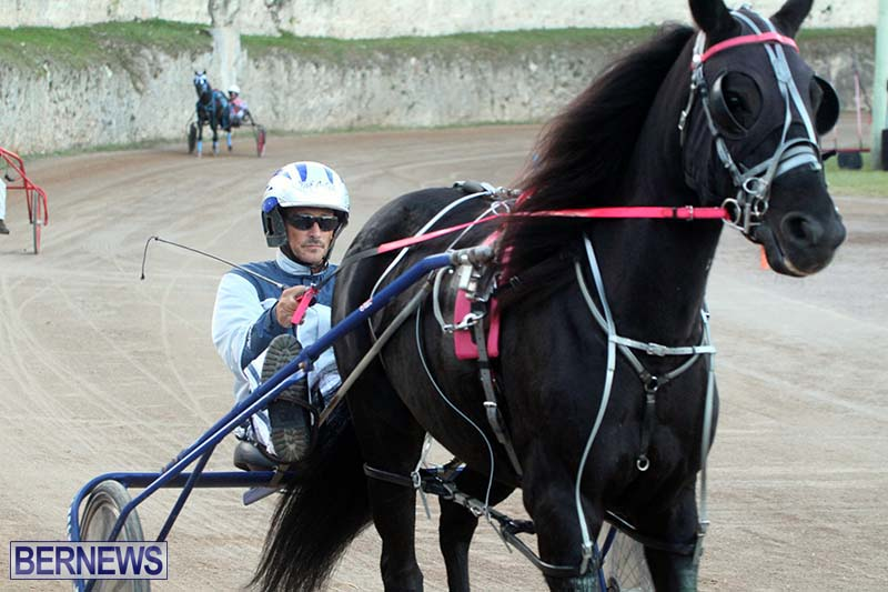 Bermuda-Harness-Pony-Racing-Season-Oct-24-2020-4