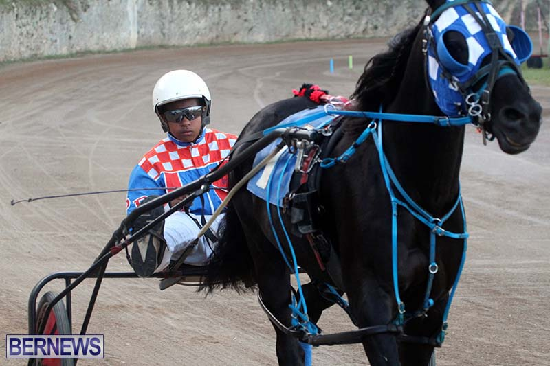 Bermuda-Harness-Pony-Racing-Season-Oct-24-2020-5