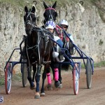 Bermuda Harness Pony Racing Season Oct 24 2020 6