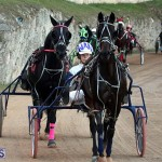 Bermuda Harness Pony Racing Season Oct 24 2020 7