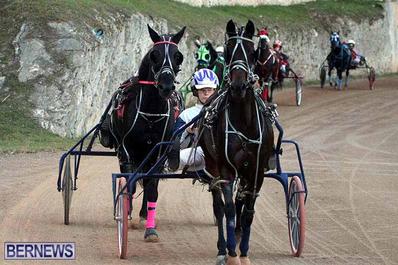 Bermuda-Harness-Pony-Racing-Season-Oct-24-2020-7