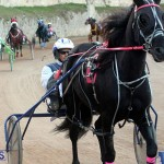 Bermuda Harness Pony Racing Season Oct 24 2020 8
