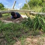 DofE Joint Training Bermuda Sept 2020  12
