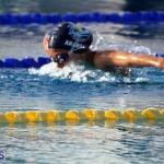 Harbor Swim Club Short Course Open Oct 24 2020 1