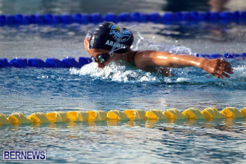 Harbor-Swim-Club-Short-Course-Open-Oct-24-2020-1