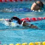 Harbor Swim Club Short Course Open Oct 24 2020 12