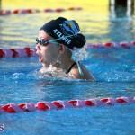 Harbor Swim Club Short Course Open Oct 24 2020 13