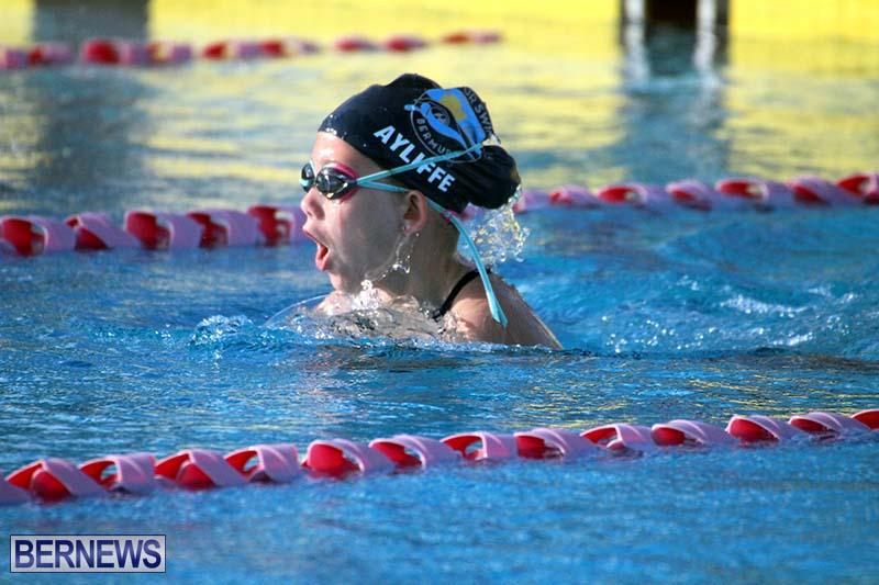 Harbor-Swim-Club-Short-Course-Open-Oct-24-2020-13