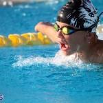 Harbor Swim Club Short Course Open Oct 24 2020 17