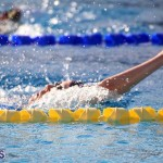 Harbor Swim Club Short Course Open Oct 24 2020 18
