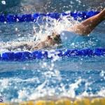 Harbor Swim Club Short Course Open Oct 24 2020 19
