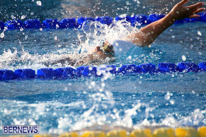 Harbor-Swim-Club-Short-Course-Open-Oct-24-2020-19