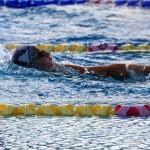 Harbor Swim Club Short Course Open Oct 24 2020 3