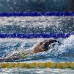 Harbor Swim Club Short Course Open Oct 24 2020 5