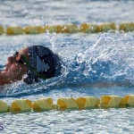 Harbor Swim Club Short Course Open Oct 24 2020 6