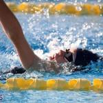Harbor Swim Club Short Course Open Oct 24 2020 7