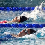 Harbor Swim Club Short Course Open Oct 24 2020 8
