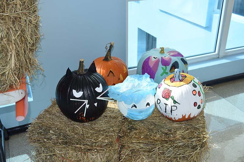 Pumpkin Decorating Display At MSA Bermuda Oct 2020 12