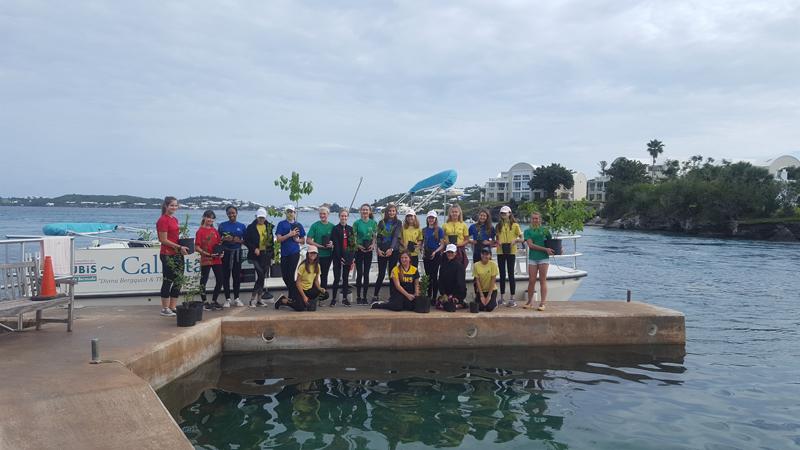 Student Volunteers Bermuda October 2020