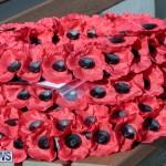 2020 Bermuda Remembrance Day veterans ceremony November DF (1)