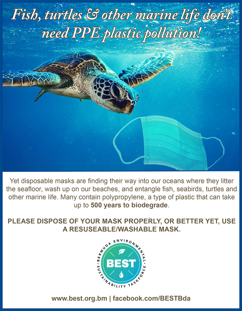 BEST PPE Pollution Campaign Bermuda Nov 2020