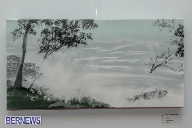 Bermuda art gallery show BSOA November 13 2020 (10)