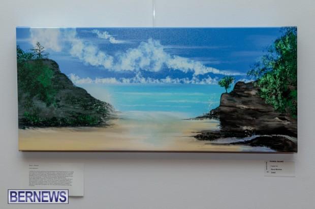 Bermuda art gallery show BSOA November 13 2020 (11)