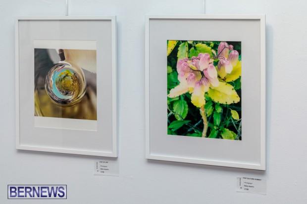 Bermuda art gallery show BSOA November 13 2020 (13)