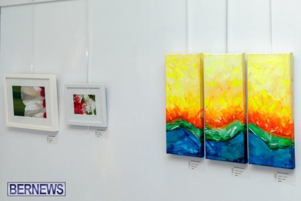 Bermuda art gallery show BSOA November 13 2020 (26)