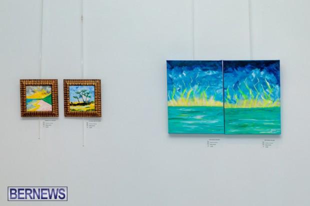 Bermuda art gallery show BSOA November 13 2020 (29)