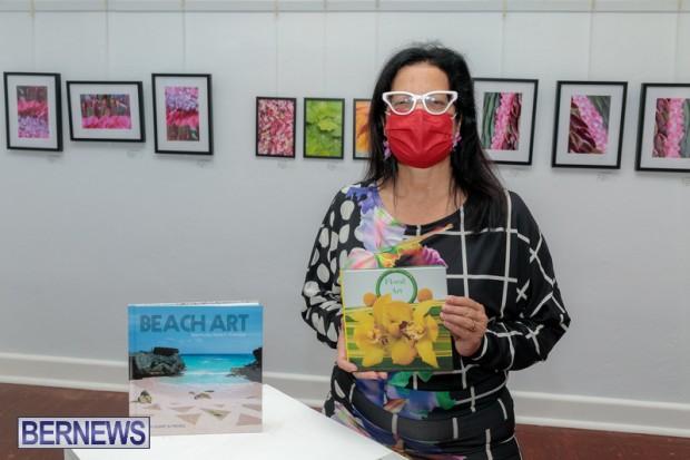 Bermuda art gallery show BSOA November 13 2020 (34)