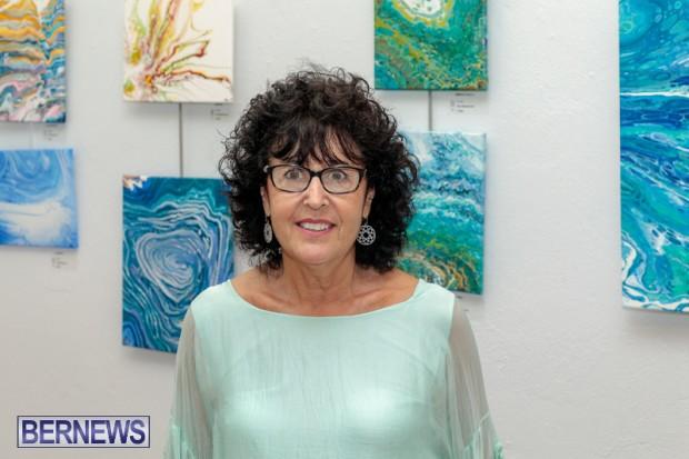 Bermuda art gallery show BSOA November 13 2020 (35)
