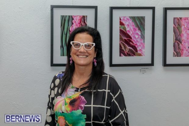 Bermuda art gallery show BSOA November 13 2020 (36)