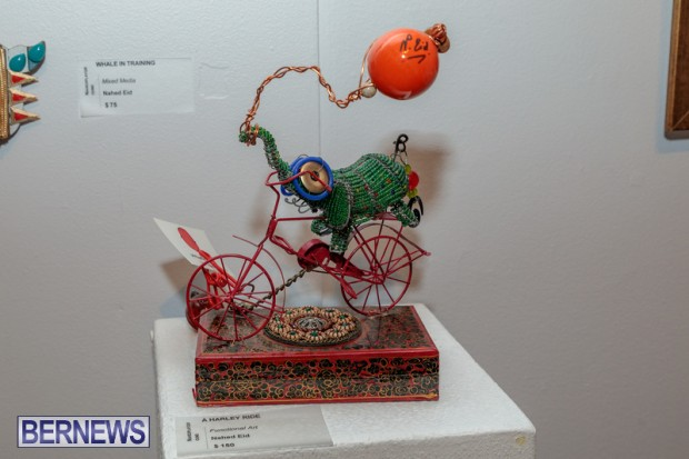 Bermuda art gallery show BSOA November 13 2020 (38)