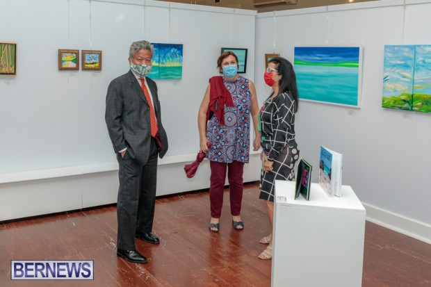 Bermuda art gallery show BSOA November 13 2020 (42)