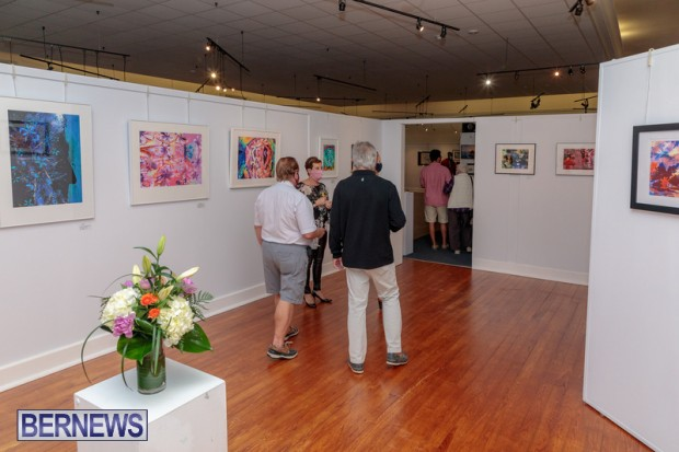 Bermuda art gallery show BSOA November 13 2020 (43)