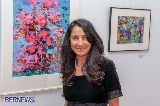 Bermuda art gallery show BSOA November 13 2020 (45)